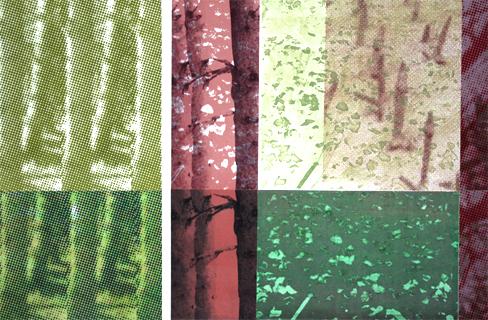 skoven nu 6